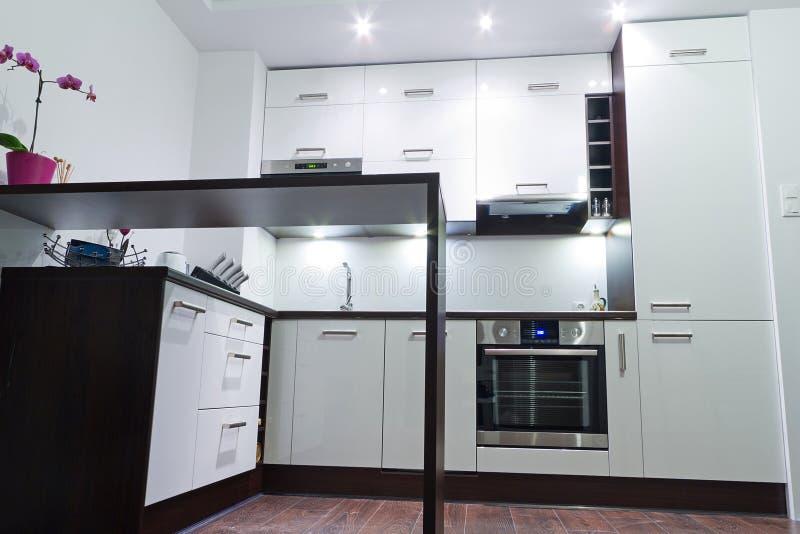 Intérieur brillant moderne de cuisine