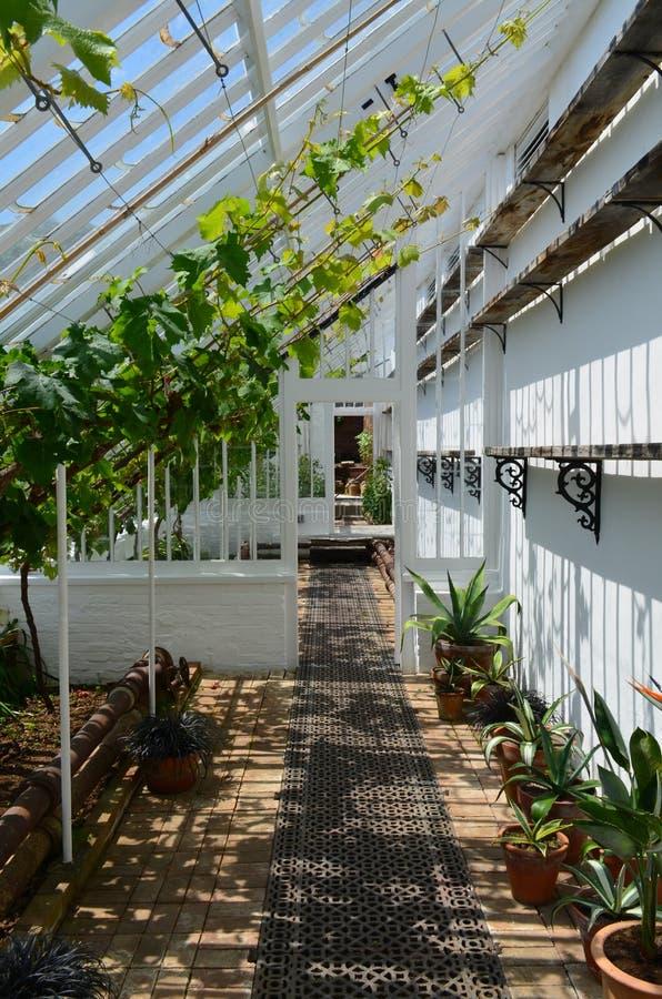 int rieur d 39 une grande serre chaude de jardin photo stock image 42003366. Black Bedroom Furniture Sets. Home Design Ideas