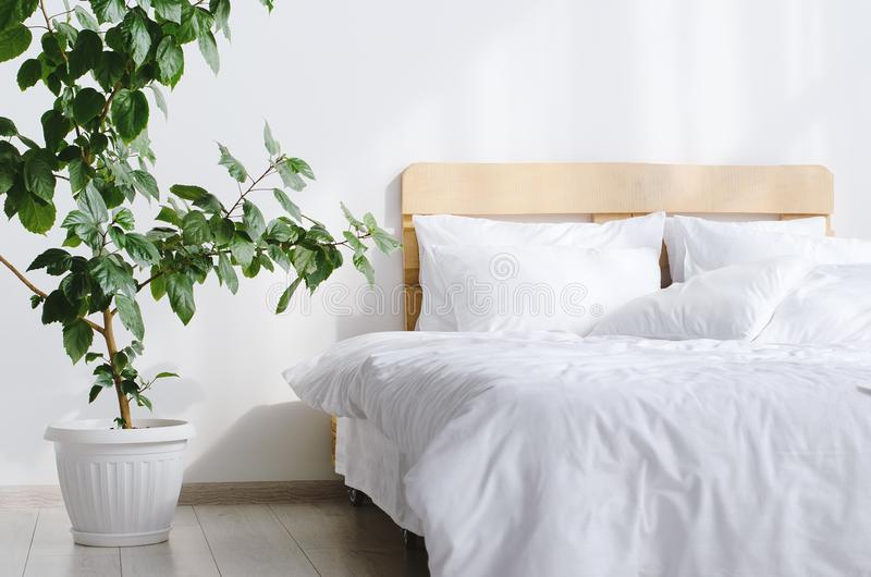 Intérieur de chambre à coucher avec le lit et la grande fleur d'indor photographie stock libre de droits