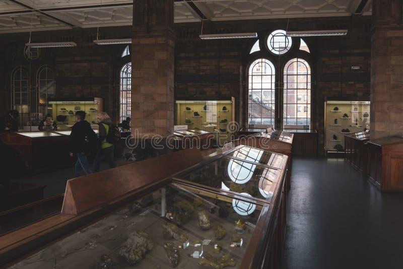 Intérieur de la galerie de minerais du musée d'histoire naturelle à Londres photo libre de droits