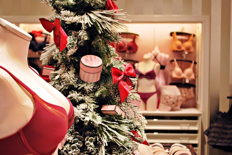 Intérieur de magasin secret du ` s de Victoria photo libre de droits