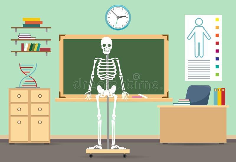 Intérieur de salle de classe d'anatomie illustration libre de droits