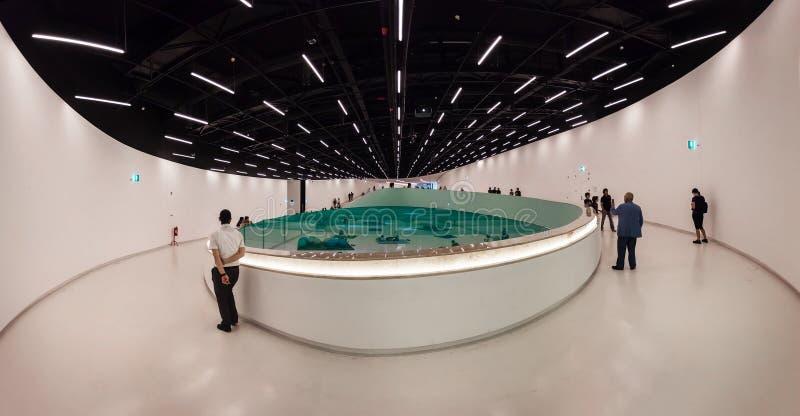 Intérieur du MAAT - Musée d'Art, architecture et technologie image libre de droits