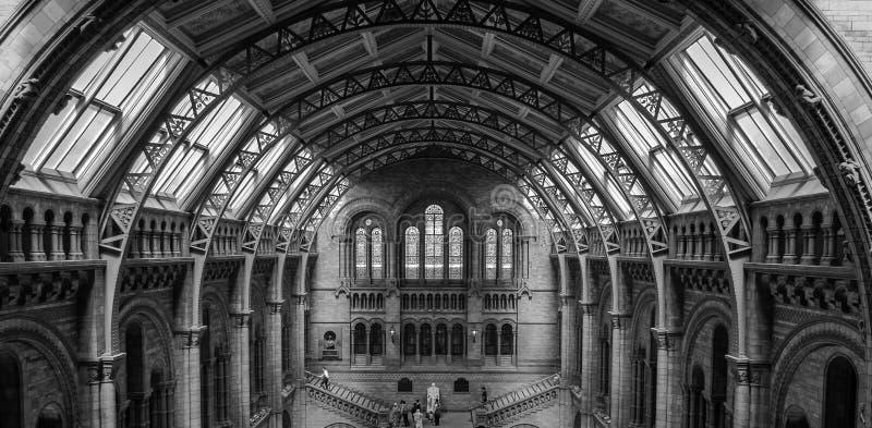 Intérieur du musée d'histoire naturelle de Londres images stock