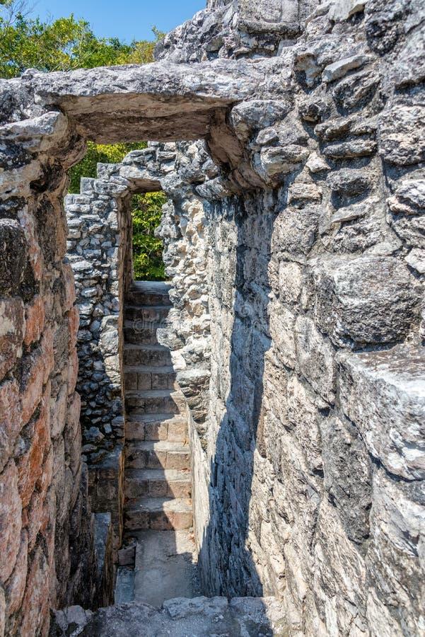 Intérieur maya de temple de ruines photos stock