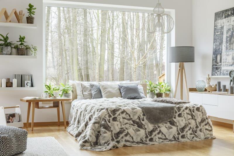 Intérieur spacieux et confortable de chambre à coucher photographie stock libre de droits
