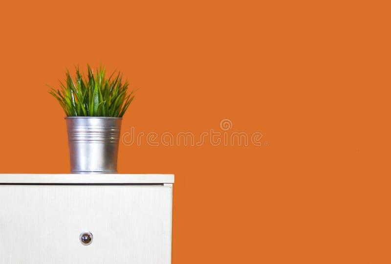 Int?rieur pot avec l'herbe décorative se tenant sur la raboteuse dans la perspective du mur orange photographie stock libre de droits