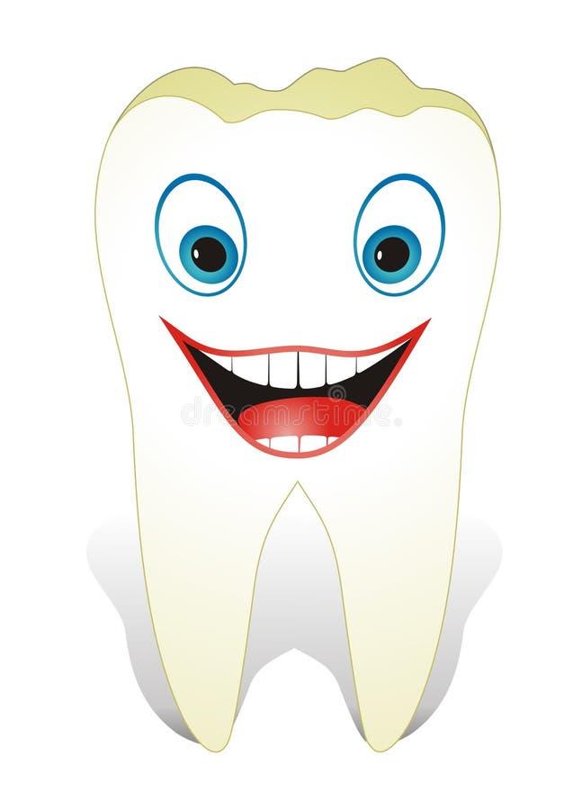 Intakter, gesunder molarer Zahn stockfotografie