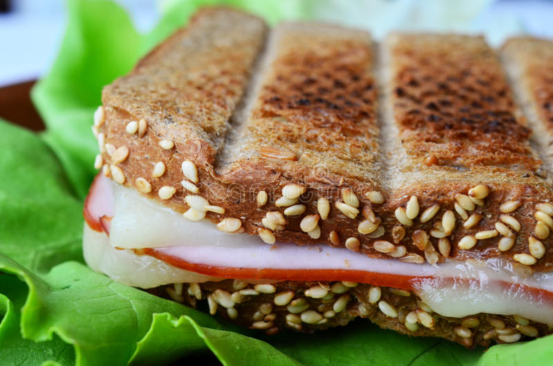 Download Integral Toast, Ham And Cheese Sandwich 5 Stock Image - Image: 31183625