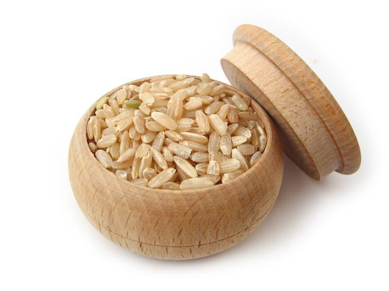 Integraler Reis lizenzfreie stockfotografie