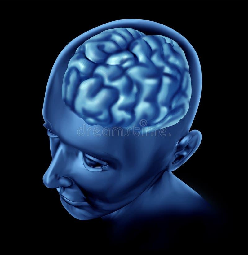 Inteligência da atividade de cérebro ilustração royalty free