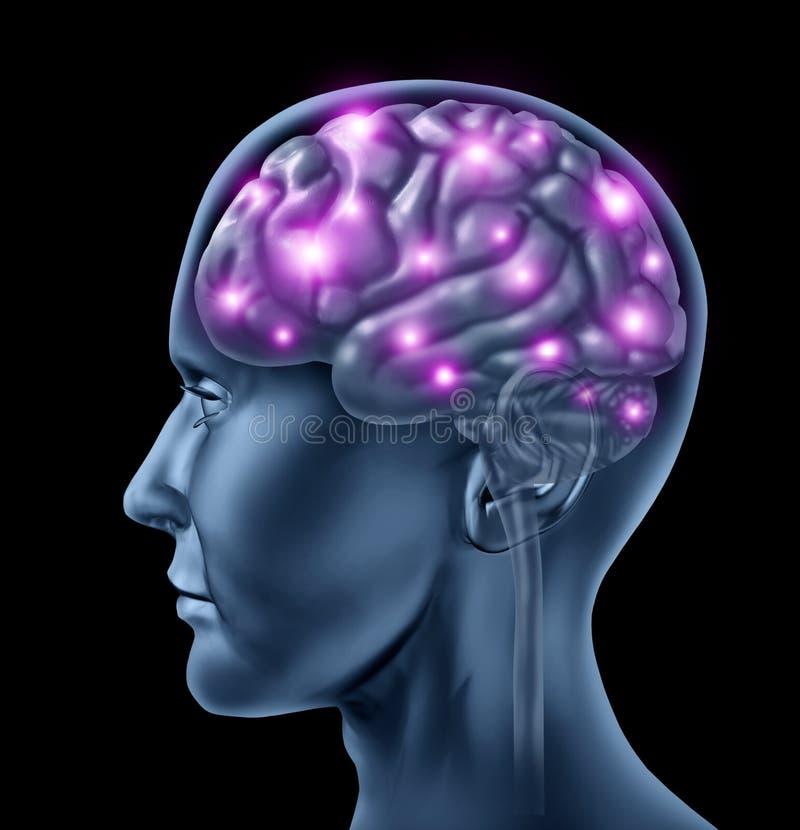 Inteligência do cérebro humano ilustração royalty free
