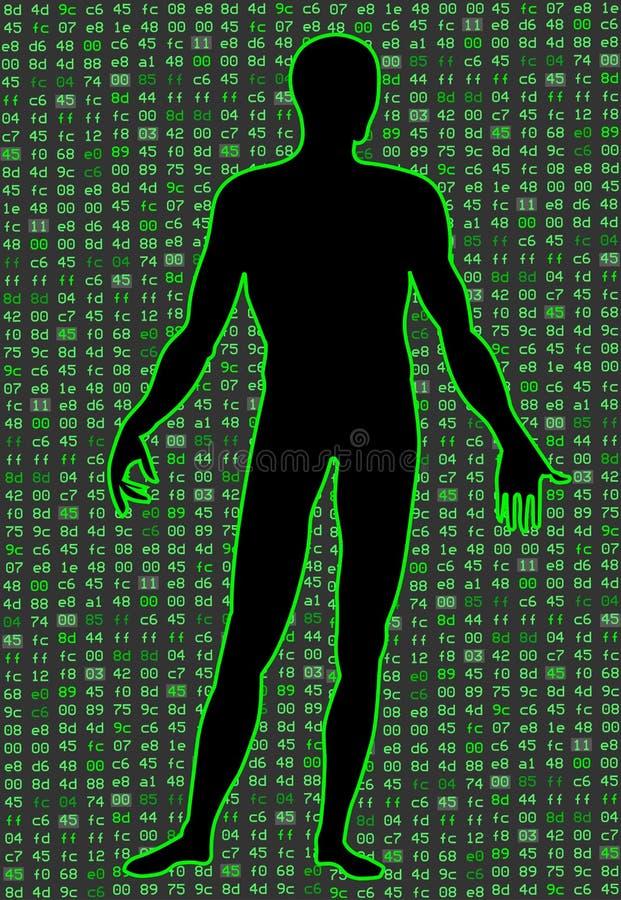 Inteligencia artificial Silueta de un cuerpo del hombre, dentro de quien código binario Puede ilustrar ideas científicas ilustración del vector