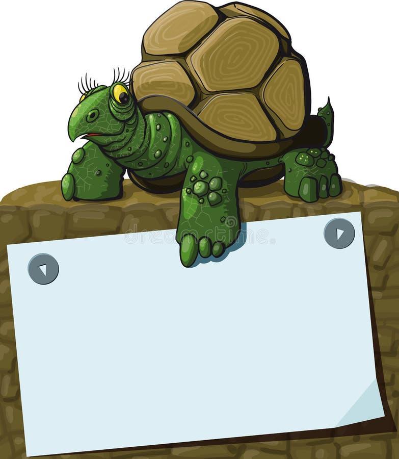 Inteligentny żółw royalty ilustracja