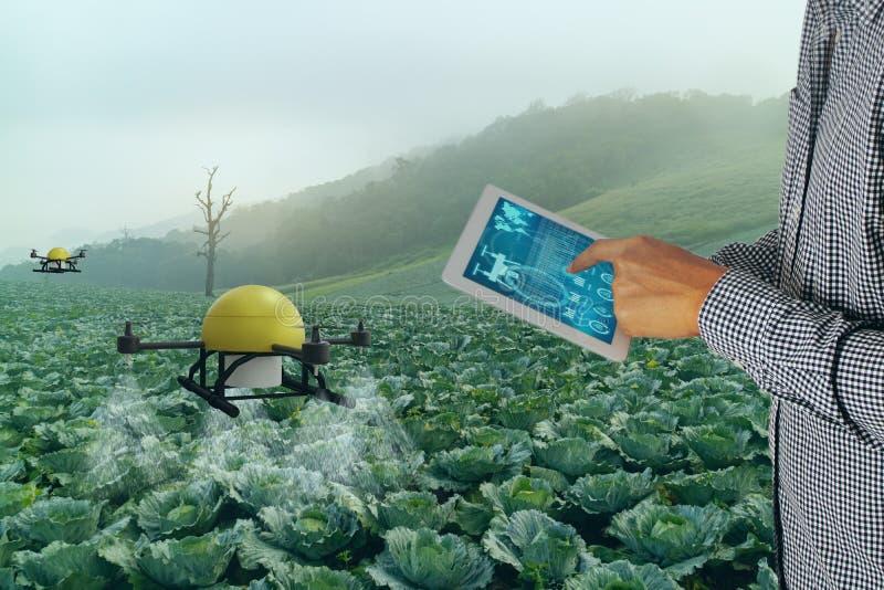 Inteligentny przemysł rolny 4 Koncepcja 0,Rolnik stosuje dron w precyzyjnym użytkowaniu gospodarstwa do rozpylania wody, nawozu l zdjęcie royalty free