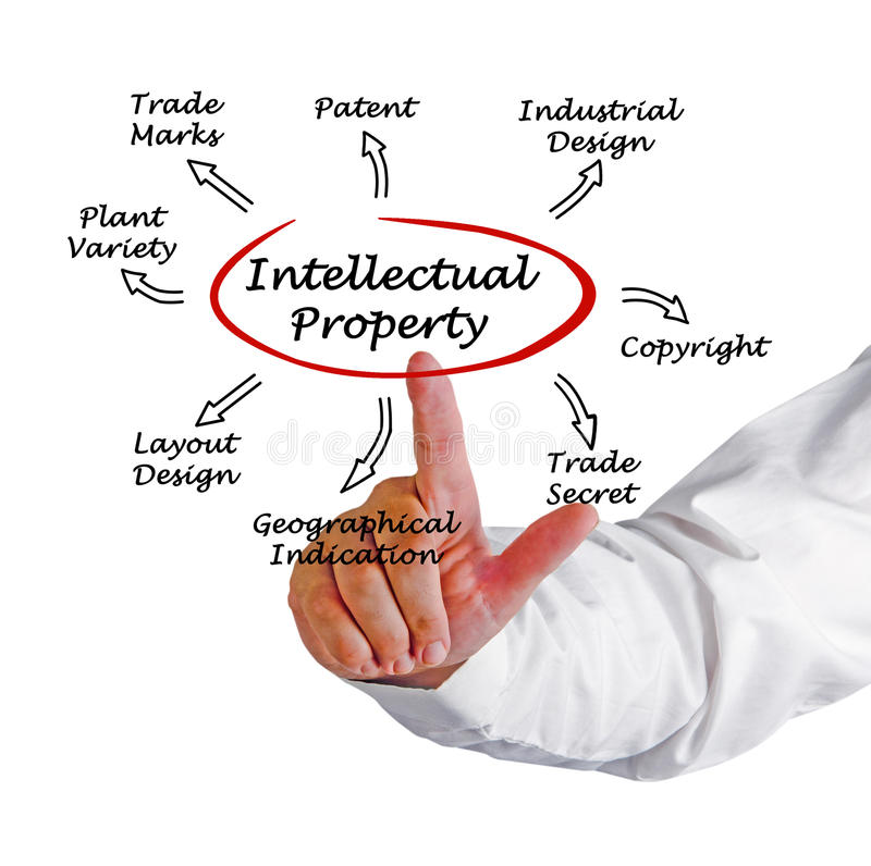 Intellectual Property. Presenting diagram of Intellectual Property royalty free stock images