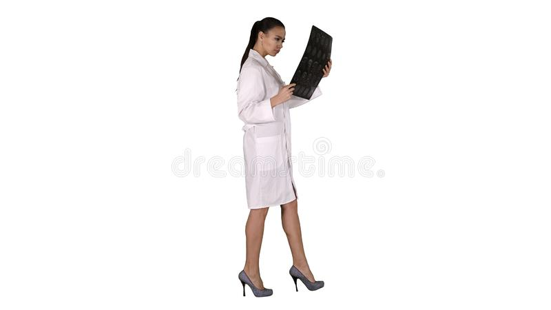 Intellectual woman healthcare personnel with white labcoat, looking at x-ray radiographic image, ct scan, mri on white stock images