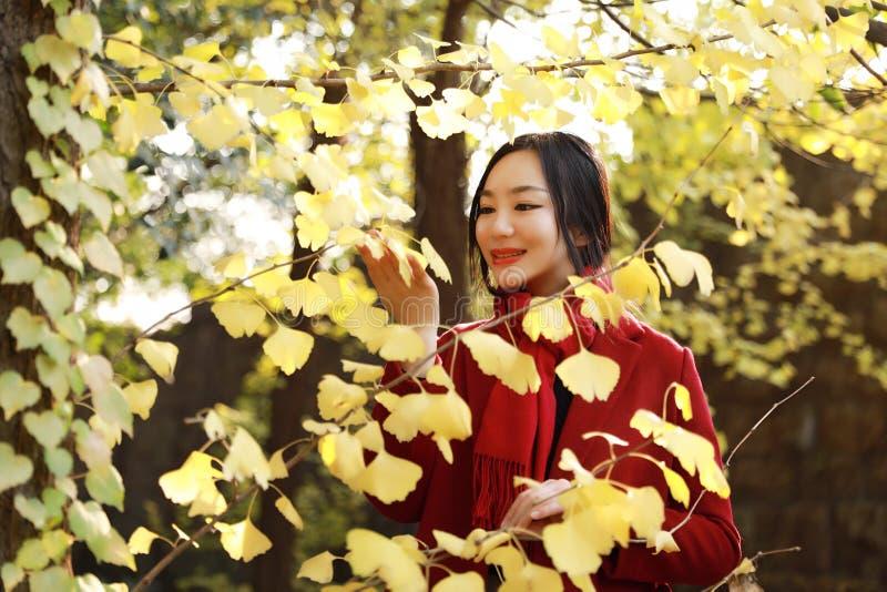 Intelligente Telefon Herbstfrau, die auf Mobile im Fall spricht lizenzfreie stockbilder