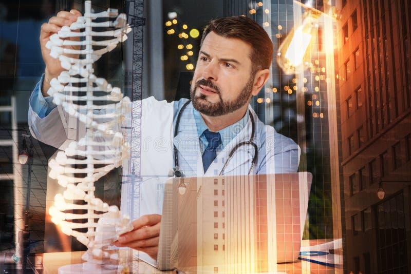Intelligenter Genetiker, der das DNA-Modell betrachtet und durchdacht es berührt lizenzfreies stockbild