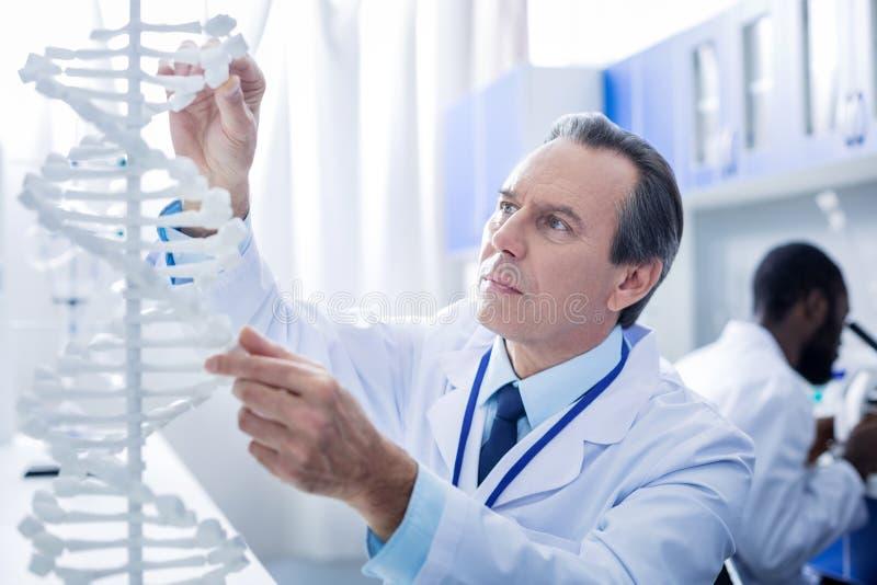 Intelligenter männlicher Wissenschaftler, der Genom studiert stockbild