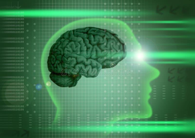 Intelligentie royalty-vrije illustratie