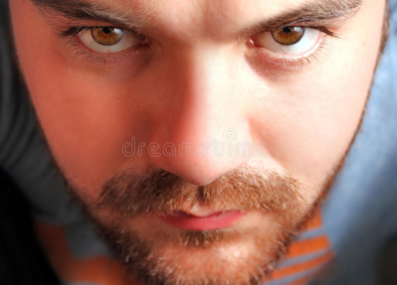 Download Intense Eyes stock photo. Image of eyes, people, intense - 10016764