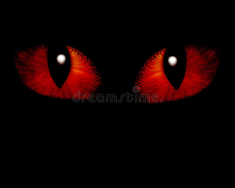 Download Intense feline look stock illustration. Illustration of pupil - 3686015