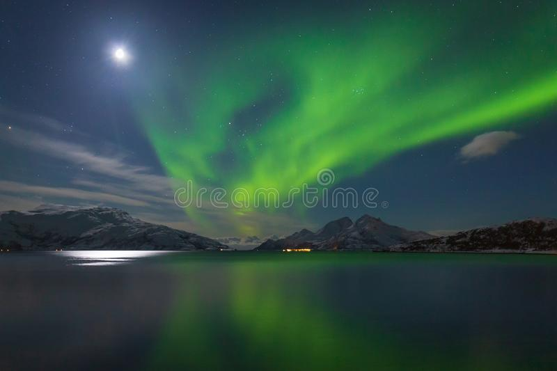 Intense green northern lights over mountains and fjord stock photography