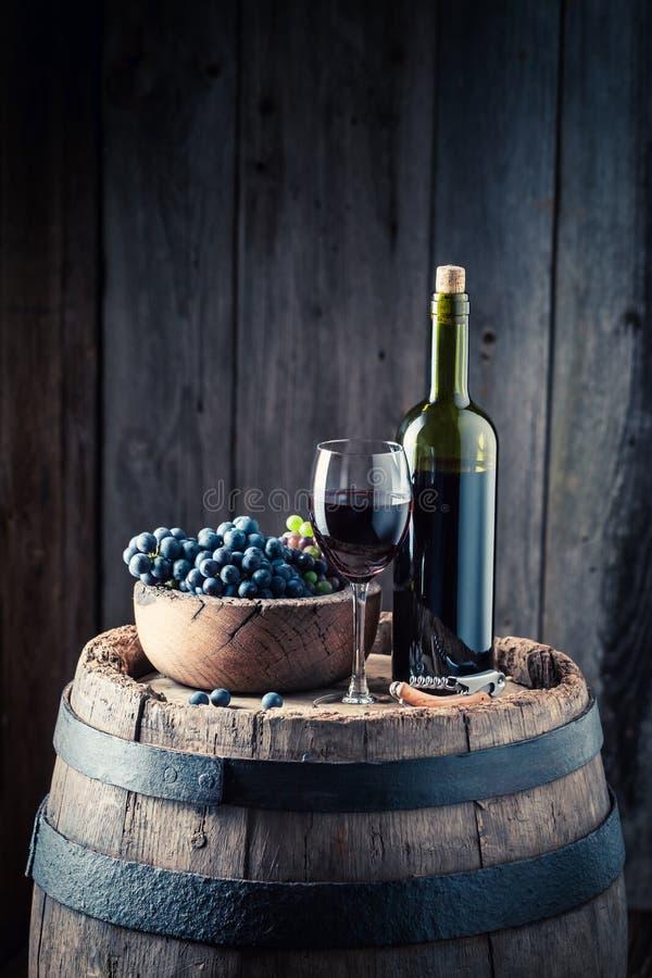 Intensives Glas voll des Rotweins und der Trauben lizenzfreie stockbilder