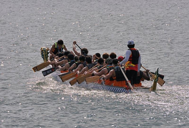 intensivt paddla för fartygdrake fotografering för bildbyråer