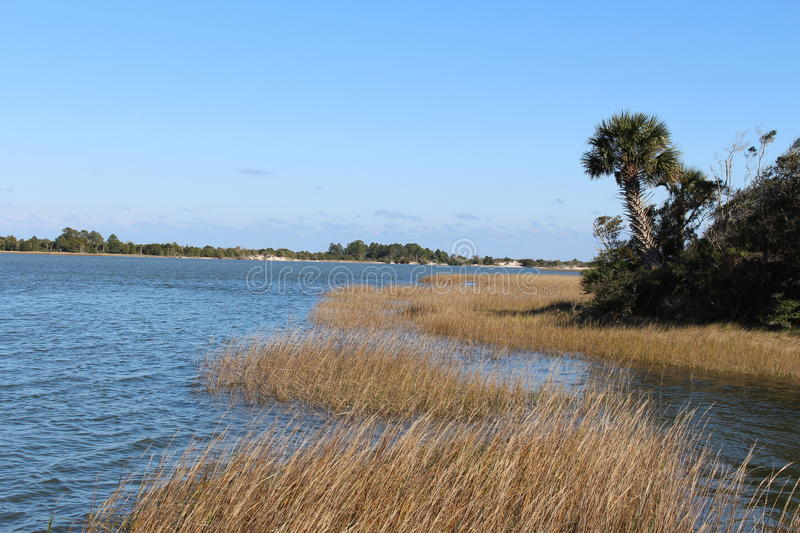 Inter coastal waterway. Taken from Ft George, FL. Salt marsh with palm trees and island in the background stock image