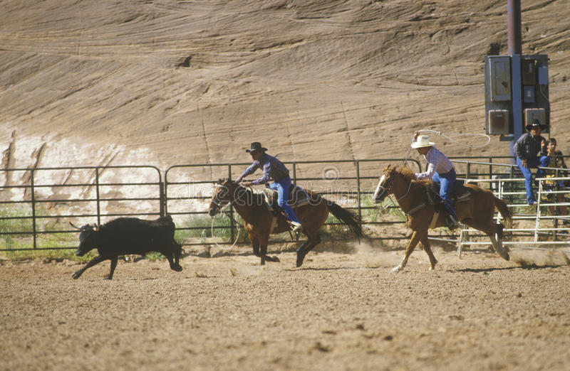 Download Inter-Tribal Ceremonial Indian Rodeo Editorial Stock Image - Image: 26904489