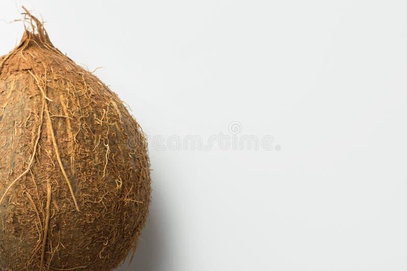 Intera noce di cocco su fondo bianco Concetto di dieta sana del vegano di frutti tropicali Ingrediente per non il latte della lat fotografia stock