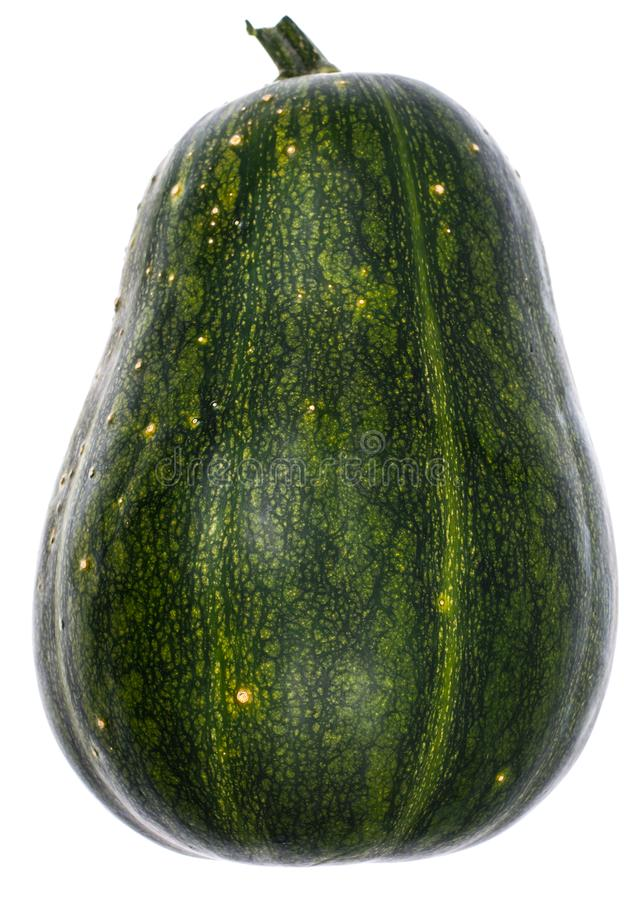 Intera zucca con pelle verde isolata su bianco fotografia stock