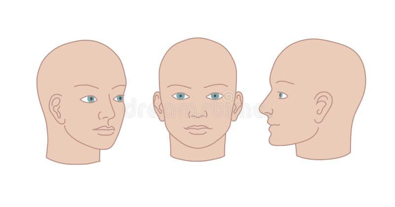 Interamente fronte delle teste umane, di profilo e di tre quarti Silho di vettore illustrazione di stock
