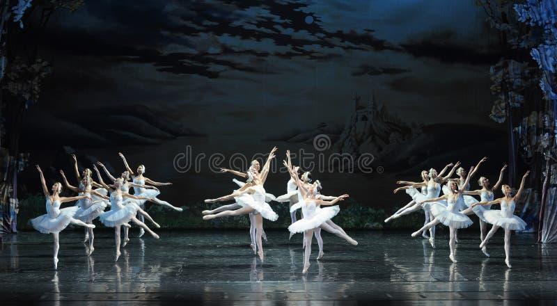 Intercalar-bailado transversal O Lago das Cisnes do voo imagem de stock