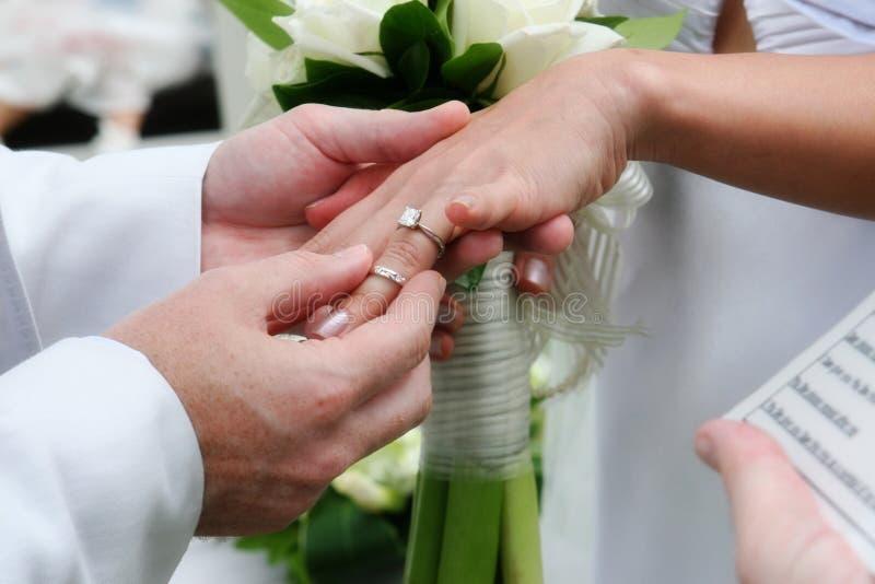 Intercambiar los anillos de bodas. imagen de archivo