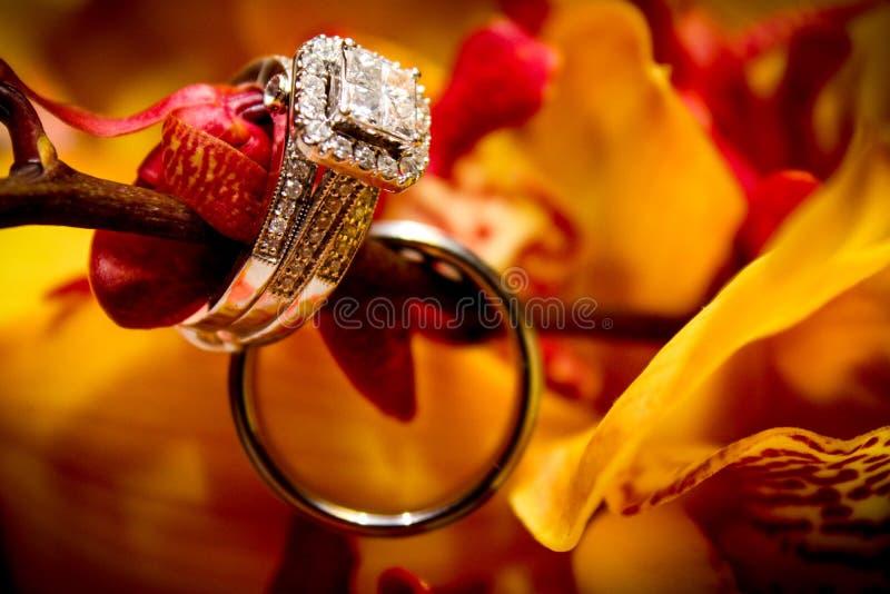 Interdiction de bague de fiançailles et de mariage photo libre de droits