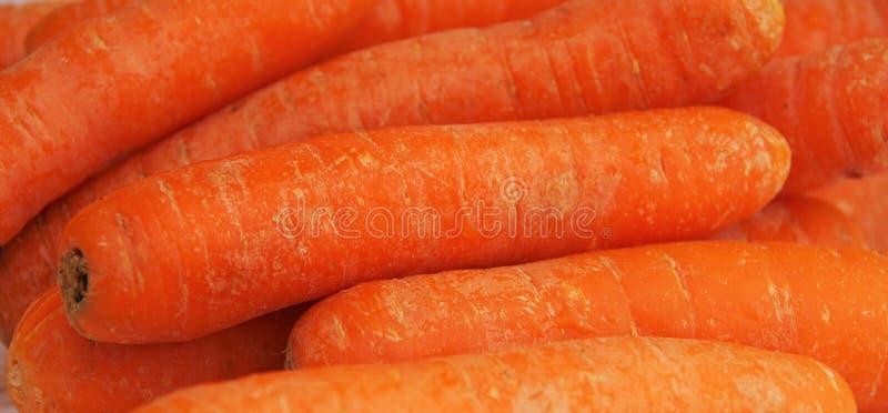 Intere carote lavate immagine stock libera da diritti