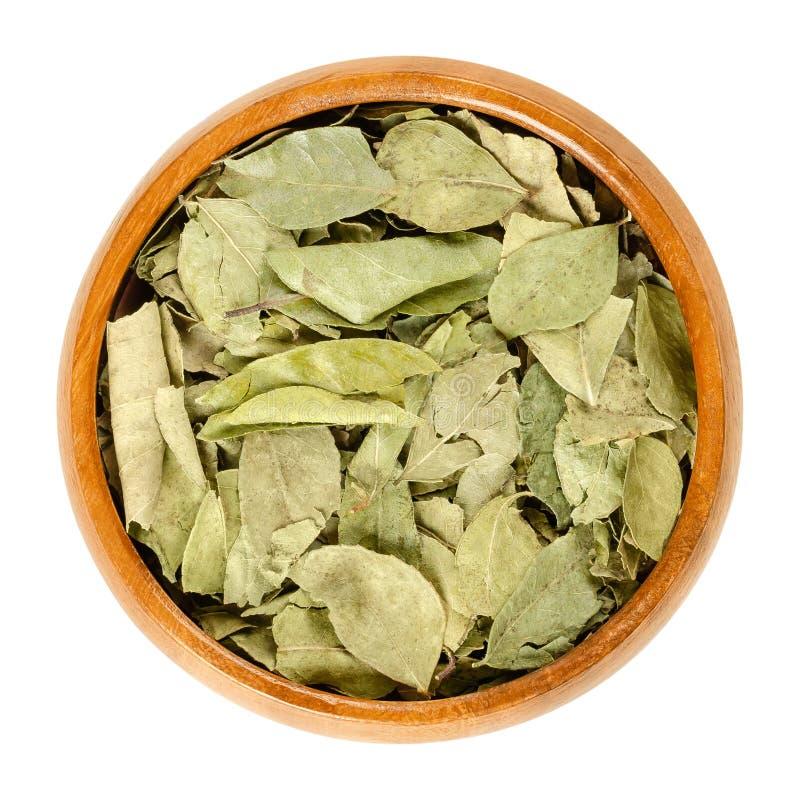 Intere foglie secche del curry in ciotola di legno sopra bianco immagine stock libera da diritti