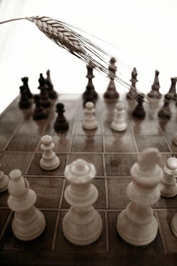 interes rośnie strategię, obraz stock