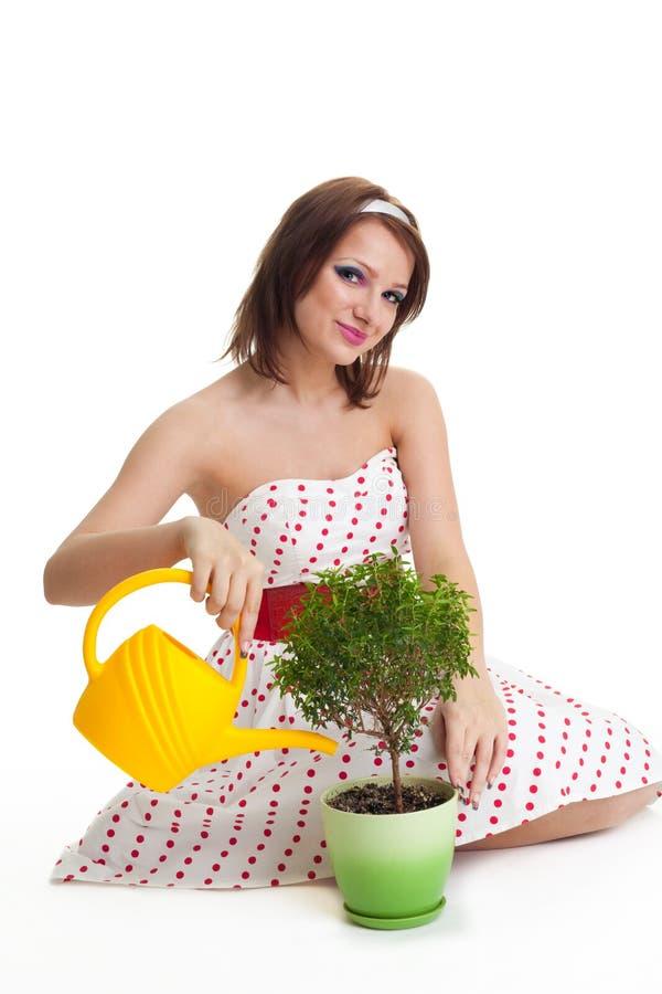 Interessierende Frau wässern eine Anlage lizenzfreie stockfotografie