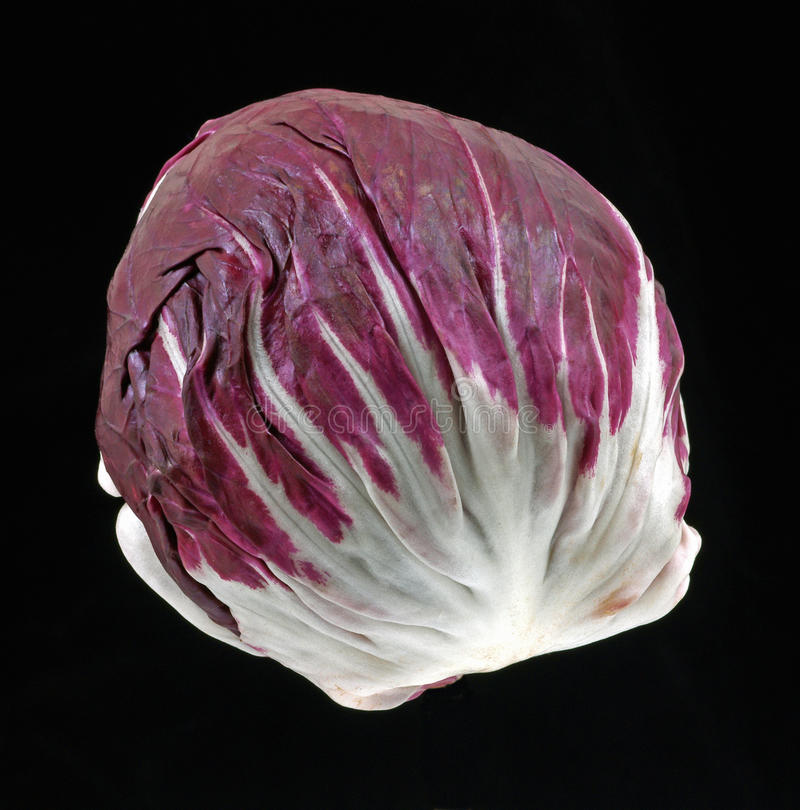 Interesting view red cabbage. An interesting view of a colorful red cabbage royalty free stock image