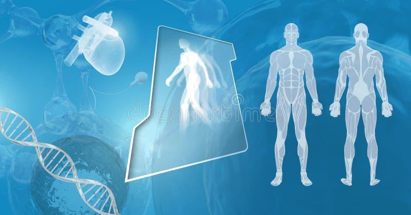 Interfaces humanos de la copia con la DNA genética stock de ilustración