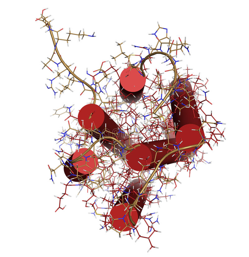 Interferon alpha 2a (IFNA2) molecule. Pegylated analogs of this. Cytokine are used to treat hepatitis B and C infections. Cartoon + wireframe representation royalty free illustration
