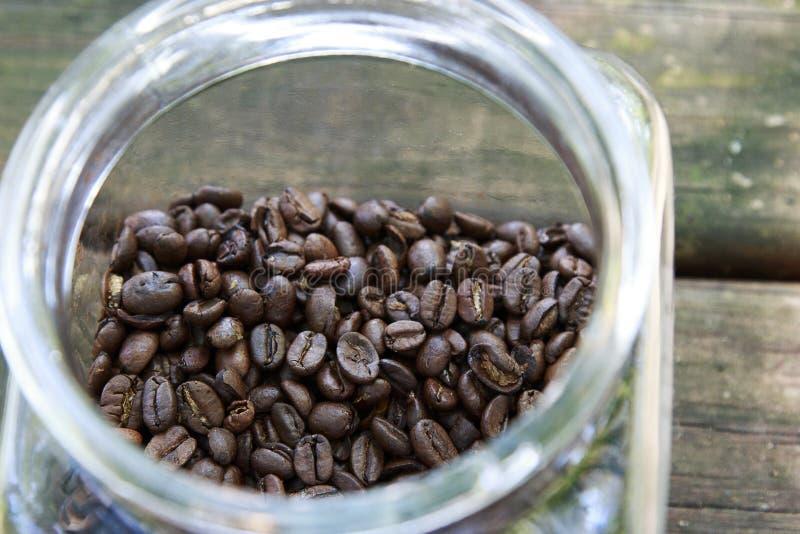 Interi chicchi di caffè in un barattolo immagine stock