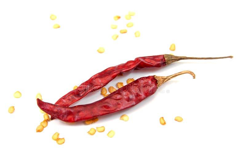 Interi peperoncini rossi rossi secchi isolati su fondo bianco r Peperoncini rossi secchi isolati Peperoncino rosso asciutto con i immagini stock