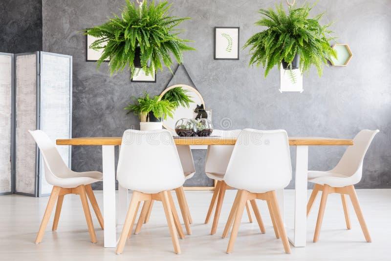 Interior amigável da sala da casa de Eco imagem de stock