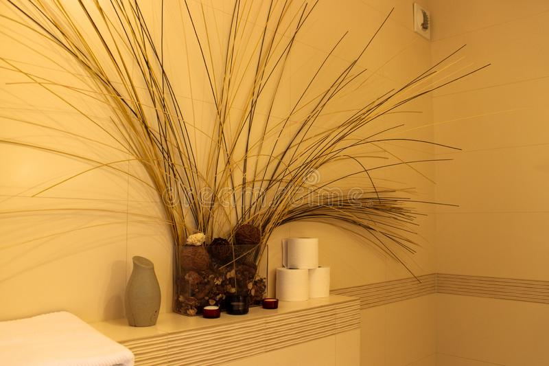 Interior of the bathroom composition of dried flowers. Vases and toilet paper royalty free stock photos