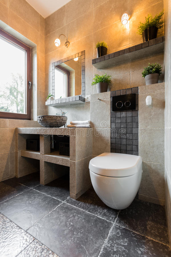 Interior of bathroom with toilet. Vertical interior of the bathroom with toilet stock image